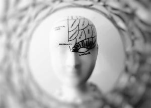 Comment les hormones féminines impactent le cerveau